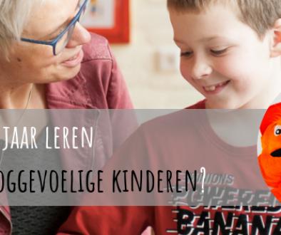 Volgend jaar leren werken met hooggevoelige kinderen?