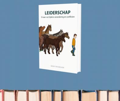 reviewpanel leiderschap